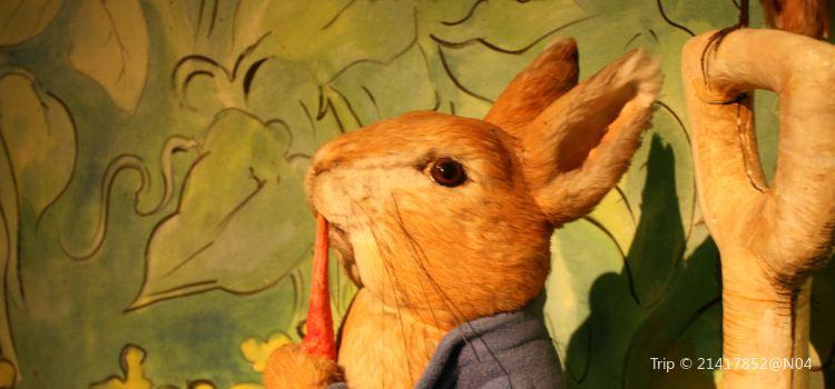 彼得兔世界1