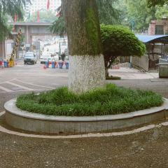漣源市第一中學用戶圖片