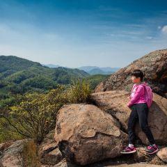 Shifo Mountain User Photo