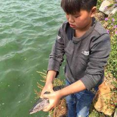 資江二橋河魚館用戶圖片