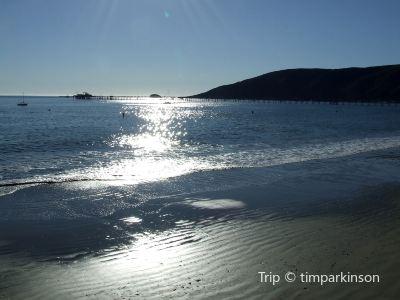Old Port Dog Beach