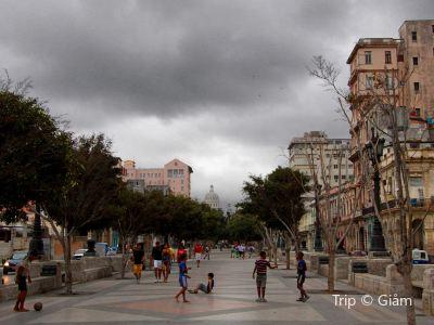 Esculturas Park
