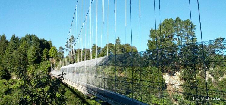 Arapuni Swing Bridge1