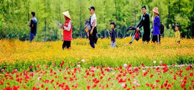 三台山國家森林公園1