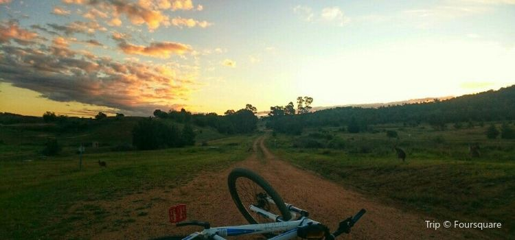 Stromlo Forest Park3