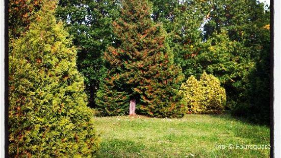 Stavropol Botanical Garden