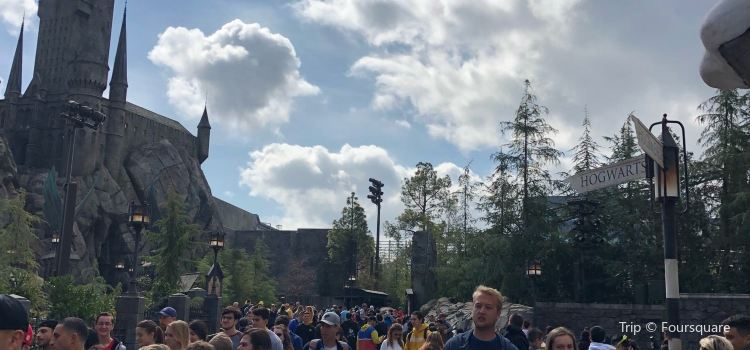 Flight of the Hippogriff3