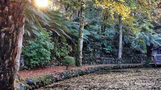 Sherbrooke Picnic Ground