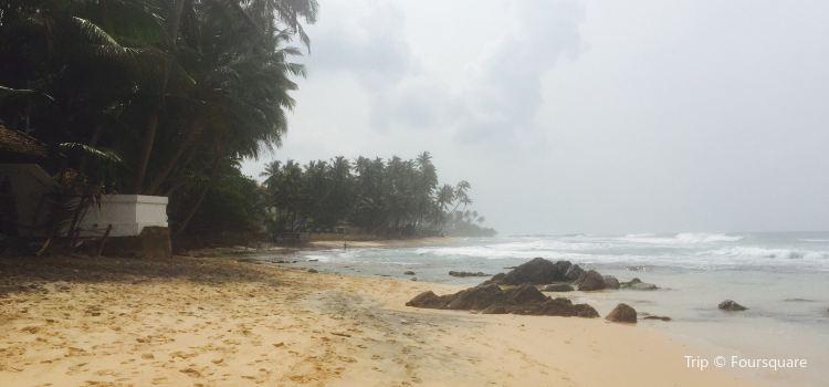 Dalawella Beach2