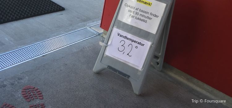 Odense Havnebad1