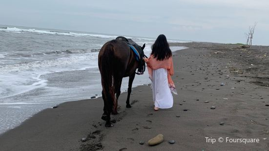 Bali Horse Riding