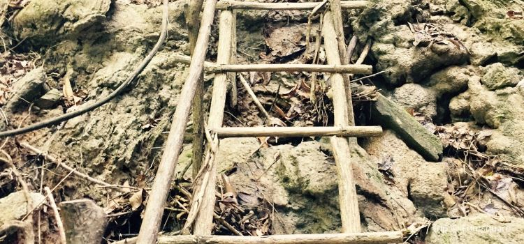 考邁卡維洞穴