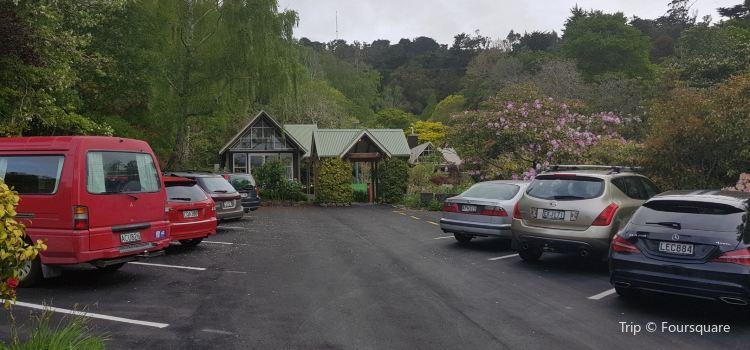 Glenfalloch Woodland Gardens1