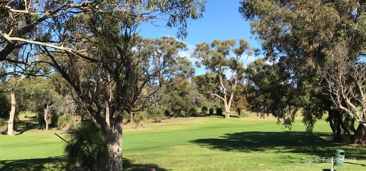 Wembley Golf Course Perth1