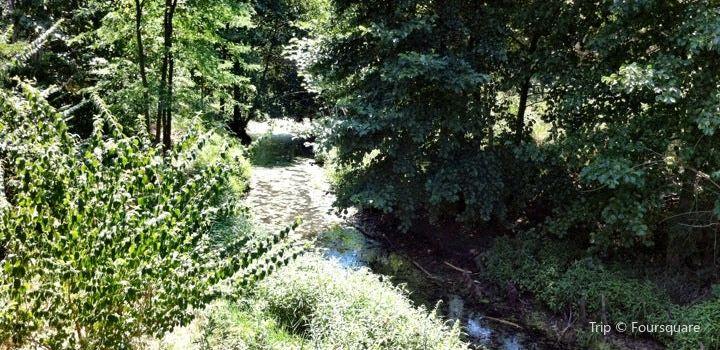 Meadowbrook Park1