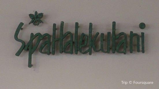 SpaHalekulani