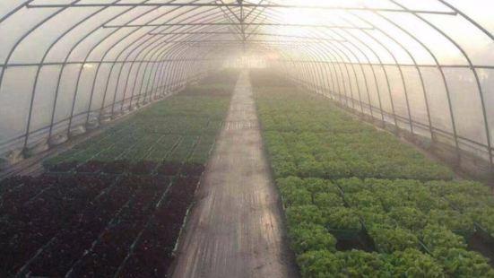紹興東湖開心農場生態餐廳