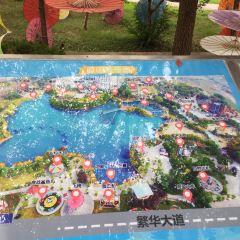 歡樂島用戶圖片