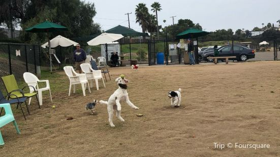 Capehart Dog Park