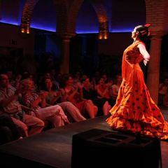 Museum of Flamenco Dance User Photo