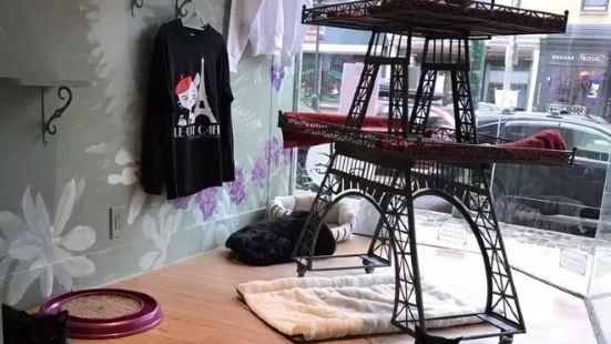 Rocket Cat Cafe