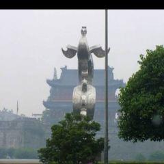 金鳳騰飛用戶圖片
