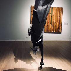 蒙特利爾美術館用戶圖片