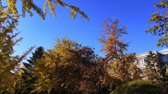 菱角湖公園