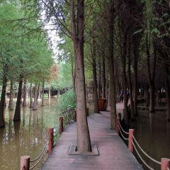 라오위허습지공원 여행 사진