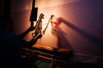 중국 전통 인형극 관람해보기