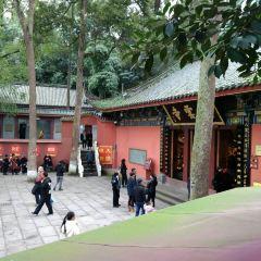 Lingyun Temple User Photo