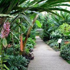 Matthaei Botanical Gardens & Nichols Arboretum User Photo
