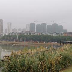 禮步湖用戶圖片
