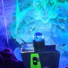 哈爾濱螢火蟲星空藝術館用戶圖片