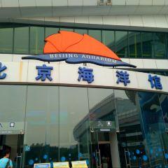 베이징 아쿠아리움(북경 해양관) 여행 사진