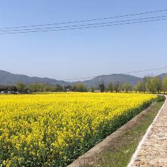 난핑(남병) 관광지구 여행 사진