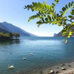加爾達湖用戶圖片
