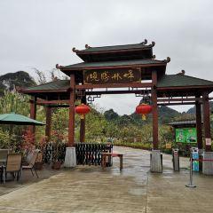Fenglin Shengjing User Photo