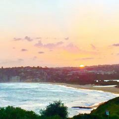 South Steyne Beach User Photo