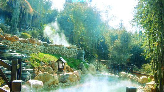 崇陽浪口森林溫泉