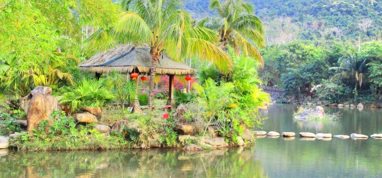 야노다 열대우림