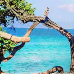 阿巴蒂耶海灘用戶圖片