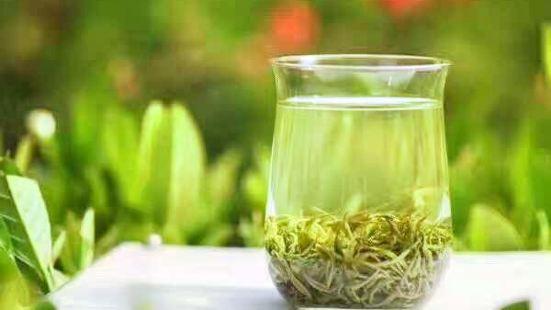 浙南茶葉市場