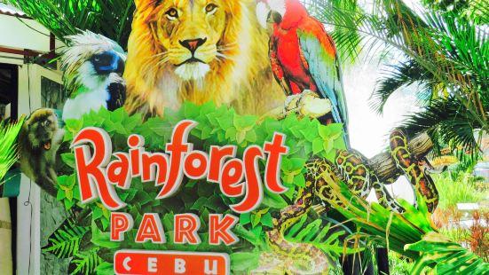 Rainforest Park Cebu