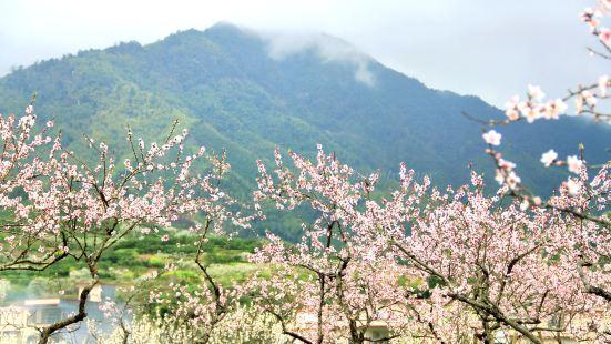 Jiufeng Town