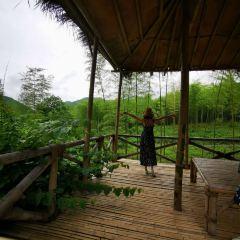 Tianxia Yinkeng Scenic Area User Photo