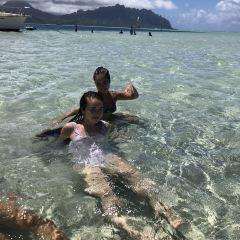 Sandbar Beach User Photo