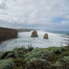 Great Ocean Road Wildlife Park用戶圖片