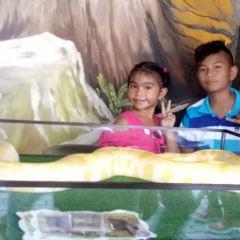 Davao Crocodile Park User Photo