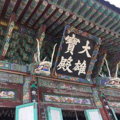 Haedong Yonggung Temple User Photo